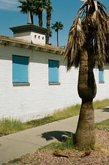 Fremont East (Travis Estell) Tags: canonae1 fremonteast kodakportra160 lasvegas lasvegasonfilm nevada nevadaonfilm portra160 thedarkroom thedarkroomlab unitedstates us 35mmfilm