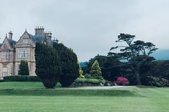 Muckross House (Yaroshevsky) Tags: ireland lake landscape abby castle travel street trees nikon d5000 35mm