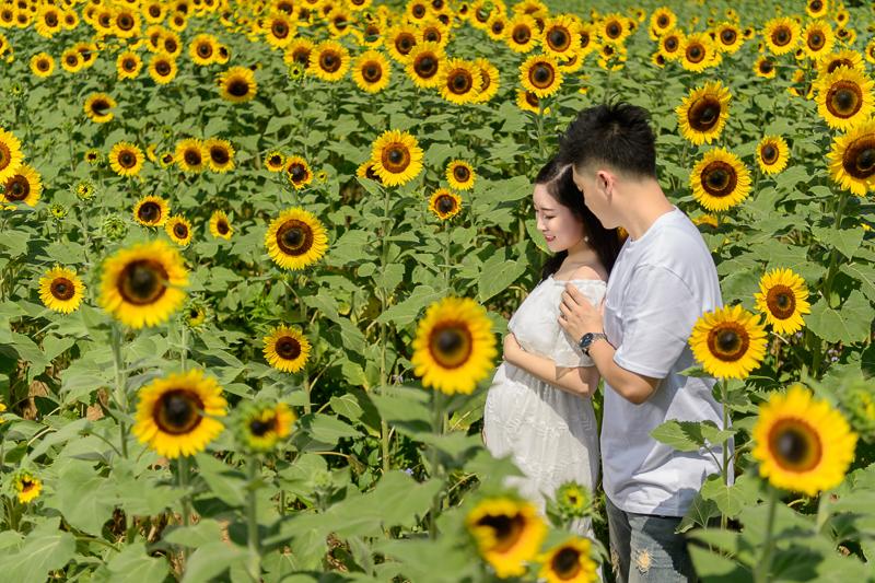 孕婦照,孕婦裝,孕婦寫真,孕婦寫真推薦,向陽農場,逆光寫真,DSC_2322