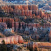 Bryce Canyon - Bright Colours