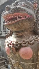 20180313_131312-01 (World Wild Tour - 500 days around the world) Tags: annapurna world wild tour worldwildtour snow pokhara kathmandu trekking himalaya everest landscape sunset sunrise montain