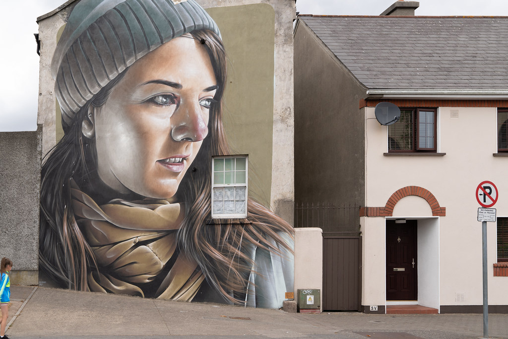 EXAMPLES OF STREET ART [URBAN CULTURE IN WATERFORD CITY]-142326