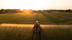 Sunset farming in France (Antoine Grelin) Tags: farming land john deer tractor wheat nature farm farmer sunset sun sunlight france north bethune