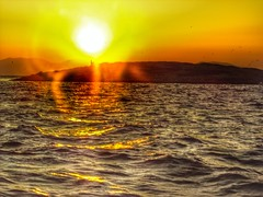 Sunlight and beams in the Saronic Islands 🌴 (LUMEN SCRIPT) Tags: backlight flare light 200 shoreline seascape seaside colours horizon softfocus mood atmosphere unsharp blur haze sunbeam sunset greece islands golden gold reflections water sea sunlight lightrays beams sunrays sun