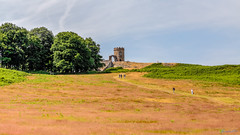 Bradgate Country Park 1st July 2018 (boddle (Steve Hart)) Tags: bradgate country park 1st july 2018 steve hart boddle steven bruce wyke road wyken coventry united kingdon england great britain canon 5d mk4 6d 100400mm is usm ii 85mm f14 prime wild wilds wildlife life nature natural bird birds flowers flower fungii fungus insect insects spiders butterfly moth butterflies moths creepy crawley winter spring summer autumn seasons sunset weather sun sky cloud clouds panoramic landscape newtownlinford unitedkingdom gb