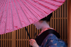 Debut (walkkyoto) Tags: 見世出し misedashi 宮川町 miyagawacho 舞妓 maiko 芸妓 geiko 京都 kyoto 日本 japan m40150mmf28pro