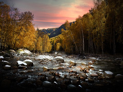 Altay Sunset (Massetti Fabrizio) Tags: sunset sunrise sun xinjiang cina china color cambo autumn altay autunno rural river red tree twilight iq180 phaseone panorami landscape landscapes light