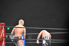 DSC_8337 (earthdog) Tags: 2018 needstags needstitle googlepixel pixel androidapp moblog cameraphone prowrestling wrestling newjapan newjapanprowrestling cowpalace g1usa nikon d5600 nikond5600 18300mmf3563 arena dalycity