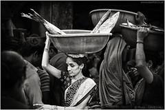 Fishy Business (channel packet) Tags: india mumbai sassoon docks fish market woman worker porter monochrome davidhill
