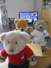 Nashunal anfum (pefkosmad) Tags: gingernutt ginger nobbynomates nobby tedricstudmuffin ted teddy bear animal cute cuddly toy fluffy plush stuffed soft worldcup2018 russia england belgium 3rdplaceplayoff nibbles food drink snax snacks watch tv television