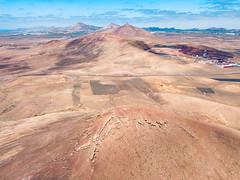 Desert landscape / Wüstenlandschaft