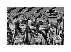 Ride ! (Explored) (CJS*64) Tags: croatia craigsunter cjs64 travel traveling blackwhite bw blackandwhite whiteblack whiteandblack mono monochrome bikes cycles seats lines nikon nikkorlens nikkor nikond7000 dslr d7000
