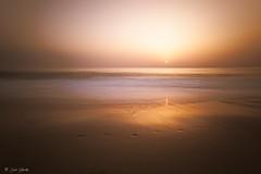 The last day (galavardo) Tags: fujifilm x70 wclx70 atardecer sunset lariño lacoruña galicia españa spain contraluz backlighting largaexposición longexposure