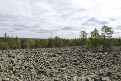 Svarttjärn - Swedish Lapland (Pier Luigi Balzarini) Tags: sweden road ontheroad famigliaontheroad viaggio reportage lapponia gotland stockholm stoccolma visby