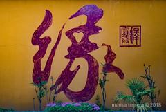 2018. Shanghai. (Marisa y Angel) Tags: 2018 yuanjinbuddhisttemple zhujiajiao china shanghái chine cina prc peoplesrepublicofchina shanghai shànghǎi templobudistadeyuanjin volksrepublikchina xangai zhōngguó zhūjiājiǎo