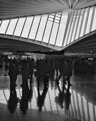 airport - bilbao (dan.boss) Tags: x100f streetphotography monochrome calatrava airport bilbao