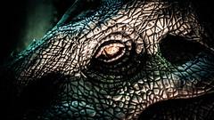 Dinosaures-9.jpg (winnono) Tags: dinosaure