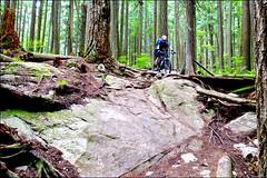 Team-Konstructive-Dream-Bikes-Trail-Trip-Vancouver-2018-Northshore-Seymore-Stone