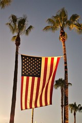 To All America - Happy 4th of July (Joey Z1) Tags: americathebeautiful americanflagpalmtrees patriotism happyfourthofjuly celebratingfreedom portofla starsstripescelebration portoflosangeles pola sanpedroca polychromatic pentaxks1 bylaphotolaureatejoeyzanotti palmtrees