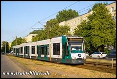 415-2018-07-04-1-Galileistraße (steffenhege) Tags: potsdam vip strasenbahn streetcar tram tramway combino combinoxl siemens niederflurwagen 415