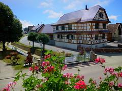 Mothern (Alsace, F) (pietro68bleu) Tags: alsace maisonàcolombages ruisseau géraniums mothern france ville outdoor beautiful fleur town