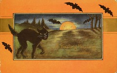 """""""A Yowling, Howling Halloween."""" Postcard made by Whitney in Worcester, Mass.  Postmarked October 30, 1917 (lhboudreau) Tags: postcard vintagepostcard holiday holidaycard halloween halloweencard bat bats vampirebats blackcat cat pussy feline fullmoon orangemoon route66 skinnycat dark night ayowlinghowlinghalloween yowling howling whitney worcester massachusetts 1917 october1917 october301917 frame framed orange orangeframe tree trees fright"""