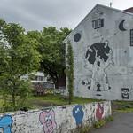 Iceland's Street Art thumbnail
