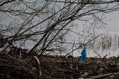 Normandie 01 04 2018_03 (Partibul) Tags: normandie partibul plastique sac bleu