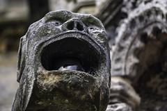 Gumless Creatures (Norse_Ninja) Tags: sculpture church rosslyn chapel religion stone creature panasonic gh5 journeyjd17