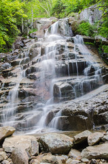 Cloudland Falls (saheedphoto) Tags: waterresources rock waterfeature nature water stream statepark rainforest forest landscape creek plant chute waterfall wasserfall whitemountainscloudlandfalls arroyo vegetation landmarks watercourse tree bodyofwater naturereserve labels
