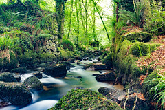 Kennel Vale River (A.Roddis) Tags: kennel vale ponsanooth cornwall cornish abandoned gunpowder explosives nature trail river long exposure canon eos 750d trees woods waterwheel