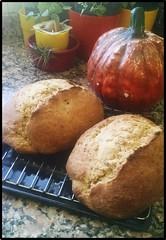 Pan de avena y calabaza- IMG_20180326_104220-framed (marialuz_fernandez) Tags: pan bread breadin5 oatmeal avena pumpkin calabaza