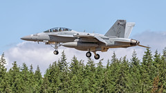 """United States Navy Boeing EA-18G Growler attached to Electronic Attack Squadron 140 (VAQ-140) """"Patriots"""" 505, Boeing EA-18G 168252 C/N G34, Naval Air Station Whidbey Island NASWI (Hawg Wild Photography) Tags: united states navy boeing ea18g growler terrygreen hawg wild photography electronic attack squadron 140 vaq140 patriots 505 boeingea18g168252cng34 navalairstationwhidbeyislandnaswi"""