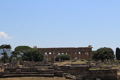 IMG_4909 Paestum (drayy) Tags: rome roman greek ancient magnagraecia paestum italy europe campania temple greektemple