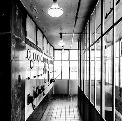 _DSC5502-2 (durr-architect) Tags: van nelle factory rotterdam modern architecture brinkman vlugt movement glass building functionalism rational production monument white period coffee tea tobacco snuff office warehouse expedition storage depots concrete frame conveyor sky bridges outdoor complex steel facade