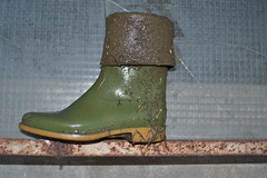 208 -- Hevea Wellies from 1970 -- Rubberboots -- Gummistiefel -- Regenlaarzen (HeveaFan) Tags: rubberboots rubberlaazen 在泥里的靴子橡胶 kaplaarzen ゴム長靴 gummistiefel 威灵顿长靴 stiefel stivali stövlar ブーツ dunlop hevea aigle ripped wornout rainboots regenlaarzen wellies bottes wellworn caoutchouc galoshes wreckled trashed regenstiefel waterlaarzen soles tuinlaarzen loch leaky damaged trouée undicht versleten laarzen wellington kaput mud boue fertig riss gomma trou abgelatscht kaputt lek gumboots boots bottas vredesteinlaarzen vredesteinwellies vredesteinstiefel