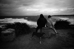 in the weather  #574 (lynnb's snaps) Tags: 2018 35mm cv21mmf4ltm leicaiiic bw film winter sydney australia leicafilmphotography rangefindercameras barnack cv21mmf4colorskoparltm coast waves ocean storm wind dog dogs people view lookout agfaapx100 kodakxtoldeveloper blackandwhite bianconegro bianconero blackwhite biancoenero blancoynegro noiretblanc monochrome schwarzweis ishootfilm longreef ©copyright2018lynnburdekin ©copyrightlynnburdekinallrightsreserved filmfilmforever