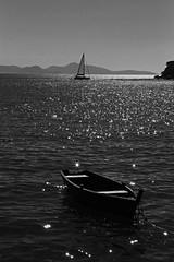 (alestaleiro) Tags: sail sailboat velero mono monochrome monocromo bianconero mar mer sea ocean barco bote boat veleiro sailing blackwhite sparkles brillo shine alestaleiro alejandrooliveraphotography alejandroolivera