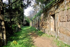 Etruscan Tombs, Banditaccia Necropolis, Cerveteri, Italy (Andy Montgomery) Tags: etruscan cerveteri tomb