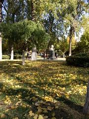 Guo Moruo / 郭沫若 (caitriana) Tags: beijing china ihep autumn