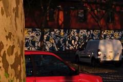 13 (kamillabrammel) Tags: art reportage street documentary