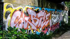 North Bank Graffiti (velodenz) Tags: velodenz fujifilm x100f graffiti river avon railway bridge saltford banes bnes england united kingdom uk great britain gb 1000 views 1000views