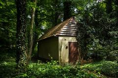 IMG_4305-2 (lieber_ulrich) Tags: herz park reha rehabilitation klinik wald natur lost place places