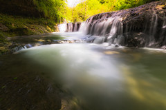 Forêt féérique 10 (alexiscrozier1) Tags: foret forest féérie magique paysages landscape cascades river rivieres vert mousse
