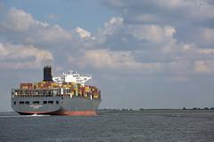 MSC FILOMENA (angelo vlassenrood) Tags: ship vessel nederland netherlands photo shoot shot photoshot picture westerschelde boot schip canon angelo walsoorden cargo container mscfilomena