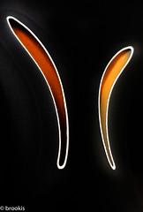 Gelling (brookis-photography) Tags: macromondays bike gel seat black orange transportation