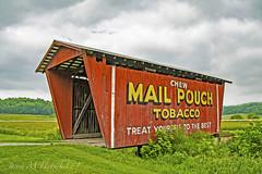 Mail Pouch Bridge (jmhutnik) Tags: bridge ohio mailpouch cambridge coveredbridge farm clouds sky trees grass