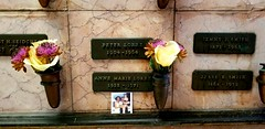 Peter Lorre niche grave (mercycube) Tags: cathedralmausoleum peterlorre wife daughter photo cremated