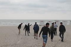 de strandwandeling