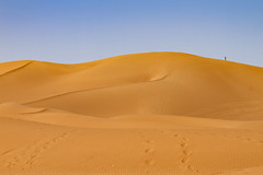 2018-4243.jpg (storvandre) Tags: nonurban scene tranquil trip seclusion liberty isolation horizon over land dune free serenity peaceful calm morocco marocco africa storvandre sahara draa valley landscape nature desert berber sand dunes sky